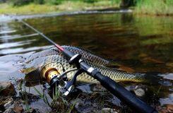 Поплавочная удочка для карповой рыбалки