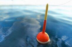 Правила выбора и сборки поплавочной снасти
