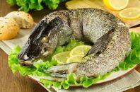 Выбор диетических рецептов из щуки