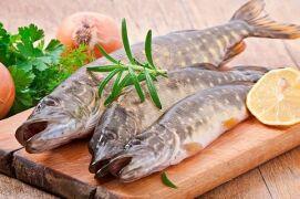 Вкусные и простые рецепты приготовления щуки