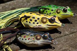 Особенности применения лягушки для ловли щуки