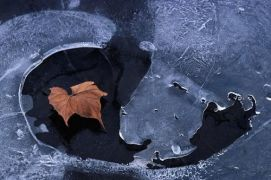 Первый лед и ловля щуки на жерлицы
