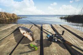 Важные моменты при выборе спиннинга для ловли щуки