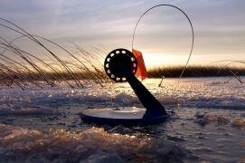 Использование жерлиц для рыбалки на щуку