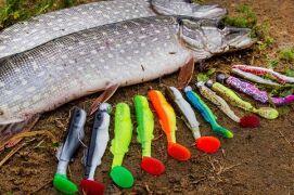 Разновидности силиконовых приманок для ловли щуки