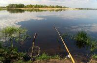 Поведение и ловля щуки на большой реке