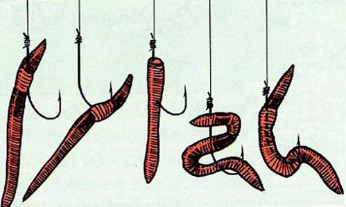 как насадить червя