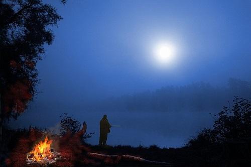как ловить ночью