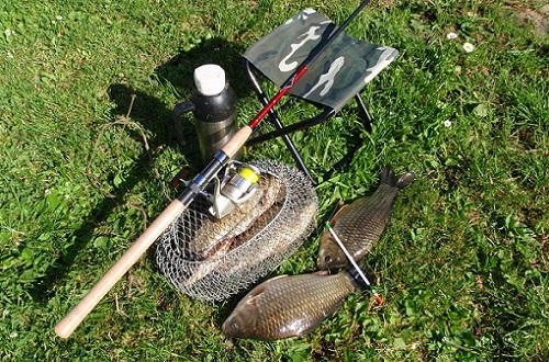 Ловля карася: от чего главным образом зависит успешность рыбалки