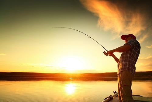 пруд и рыбалка
