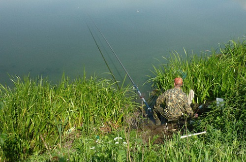 при каком давлении клюет рыба лучше рыбачить