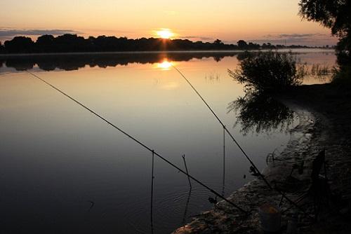 снасти для ночной рыбалки
