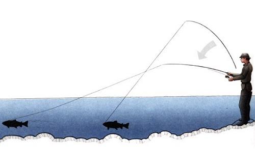 подсекание рыбы