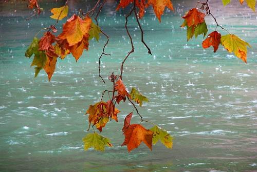 дожди осенью