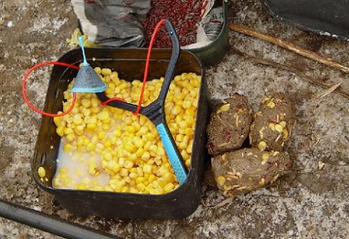 кукуруза в прикормку