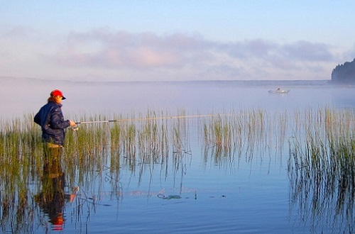 рыбак возле зарослей