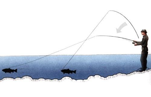 подсечка рыбы