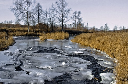 шод льда