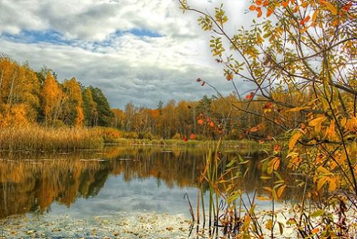 осенью на озере