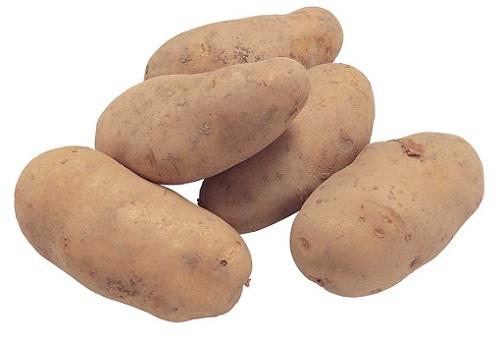 картошка для прикормки