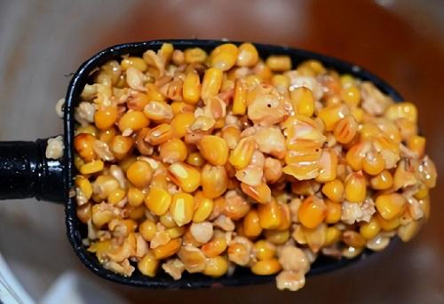 ферментированная кукуруза и прикормка