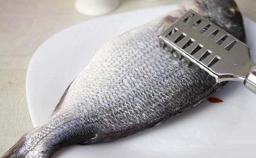 Процесс очистки рыбы от чешуи