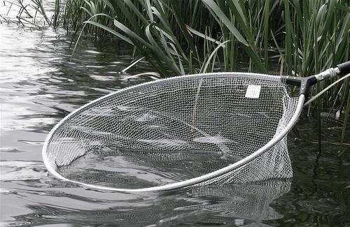 подсадок для рыбы