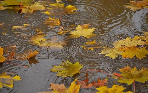 погода осенью