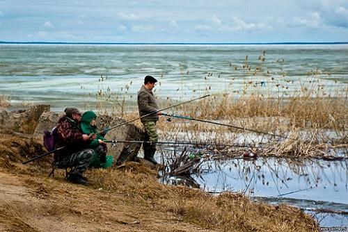 рыбалка днем