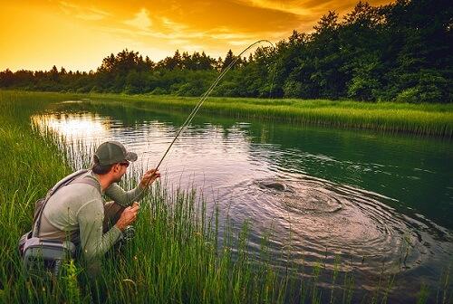летняя ловля