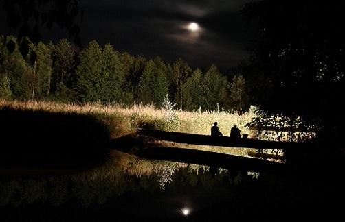 ночь и рыбалка