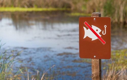 запрет ловли